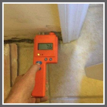 Proper equipment to detect mold