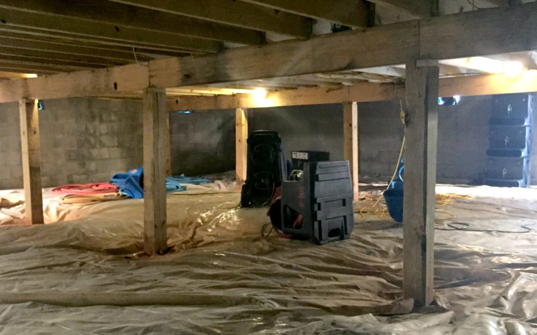 Kinds Of Equipment Used In Mold Remediation