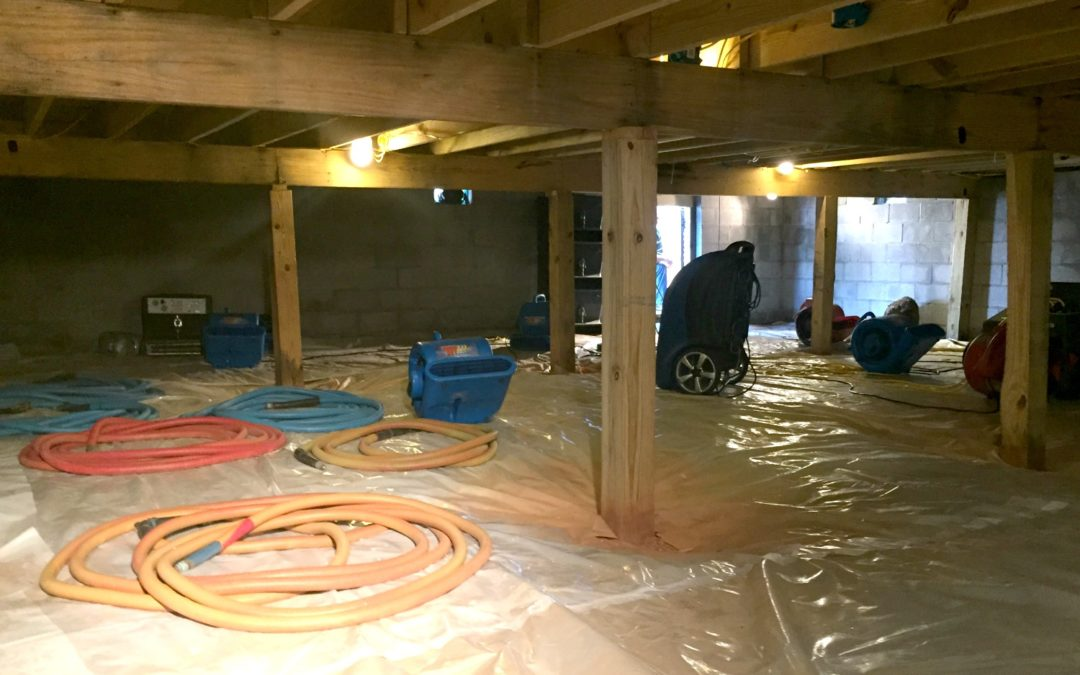 crawl space remediation specialists in Tallahassee