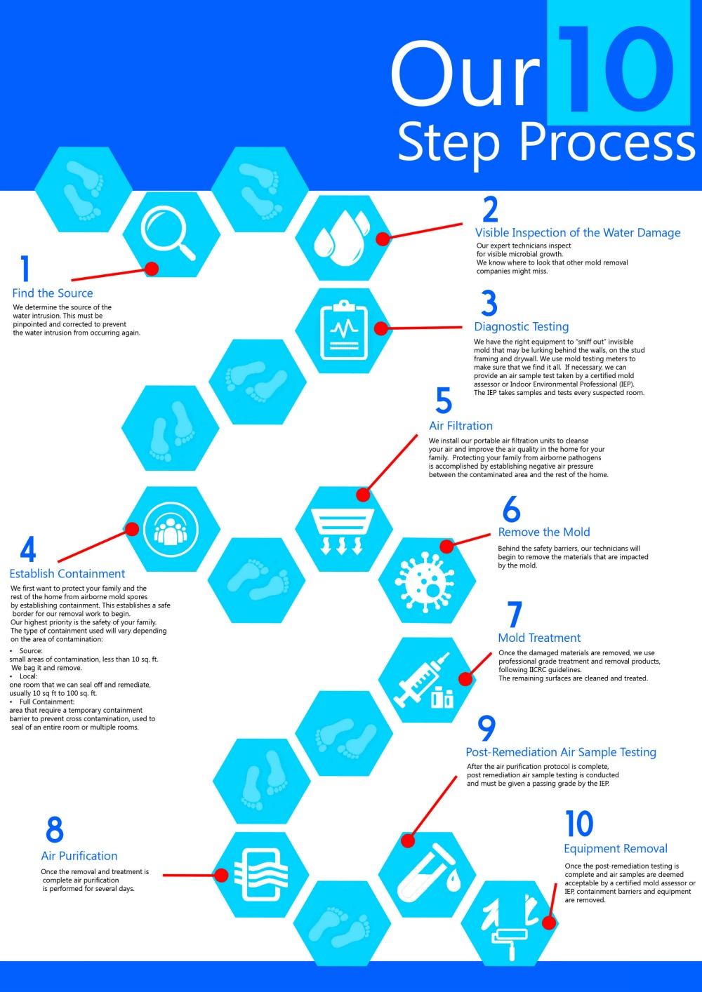 Mold-Removal-Process-Infographic