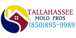 Tallahassee Mold Pros